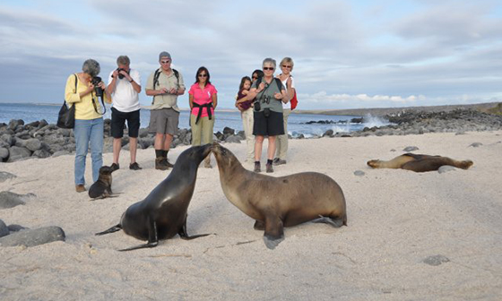 machu-picchu-and-galapagos-cruises